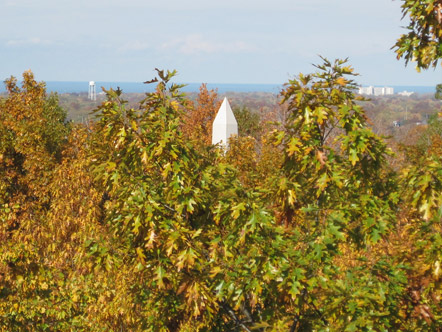 Obelisk poking above trees in Lake View Cemetery